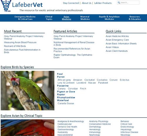 BigVet2.0-avian