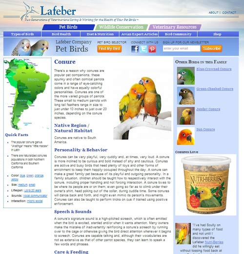 Pet bird species custom post type page